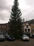 Lighted Christmas Tree in the town square by day