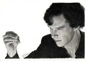 Sherlock 2 by Meike Zane
